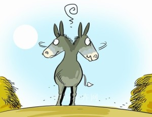 confused_donkey-300x232