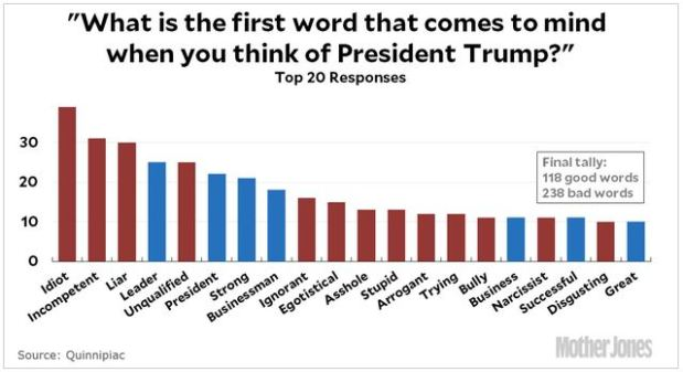 Poll - words associated w Trump